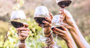 Wine – The tastiest grape juice you ever had